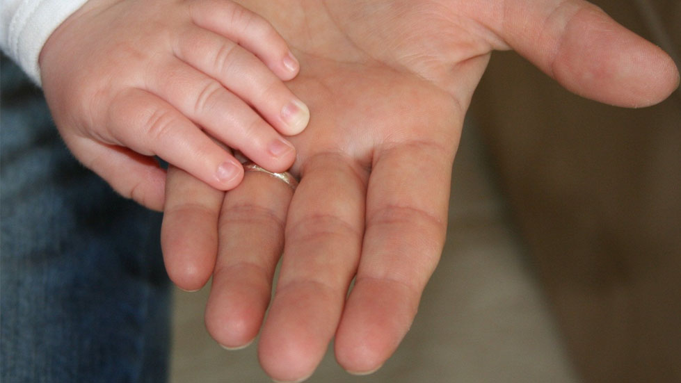 A toddler holding an adults upturned open hand
